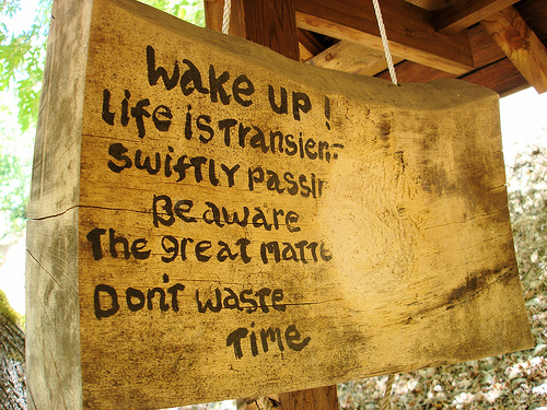 Don't Waste Your Life! | Treetop Zen Center